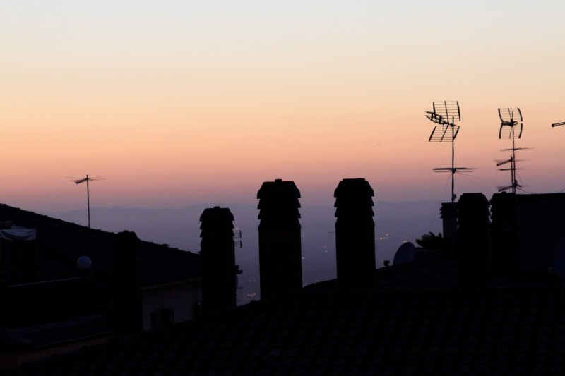 Evening view in Frascati