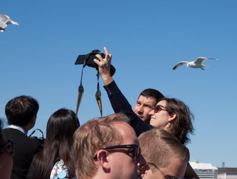 Gull selfies